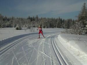 Skatingtechnik Skilanglauf