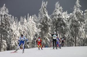 Skatinglauf_Erzgebirgsskimarathon
